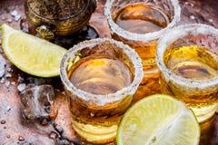 Tequilaskottet med limefrukt och saltar royaltyfri fotografi