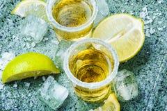 Tequilaskottet med limefrukt och saltar royaltyfria bilder