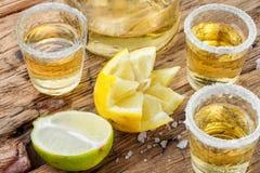Tequilaskottet med limefrukt och saltar arkivbild