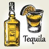 Tequilauppsättningfärg stock illustrationer