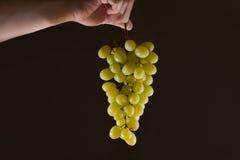 Ter beschikking gehouden druif Stock Foto's