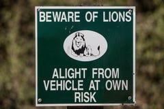 Ter cuidado com leões Imagens de Stock