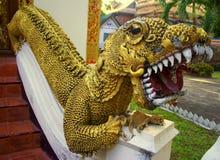 Ter cuidado com o dragão Imagem de Stock