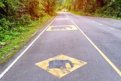 Ter cuidado com o sinal de aviso do elefante na estrada asfaltada dizer isso foto de stock royalty free