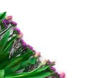 Teraźniejsza fura na białym bakground z Różowymi kwiatami Obrazy Royalty Free