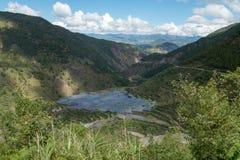Teracces inondés de riz Photo stock