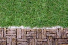 Terakotowy ceglany ścieżka wzór z zieloną trawą Obrazy Royalty Free