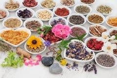 Terapeutiska örter och blommor Arkivfoton