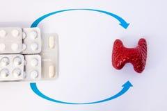 Terapi för hormonutbyte av sköldkörtel- eller hypothyroidismbegreppsfotoet Modellen av sköldkörteln är nästan droger i blåsor på  royaltyfri foto