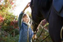 Terapi med hästar - flodhästterapi royaltyfri bild
