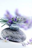 Terapia del aroma Imagen de archivo
