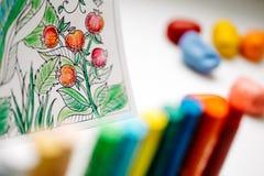 Terapia del arte y del color Libro de colorear anti del adulto de la tensión Foto de archivo libre de regalías