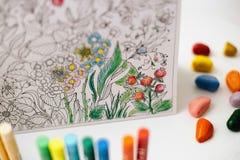 Terapia del arte y del color Libro de colorear anti del adulto de la tensión Fotografía de archivo libre de regalías