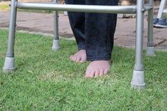 Terapia descalza que camina de la mujer mayor en hierba imagen de archivo