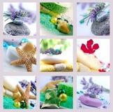 Terapia do aroma Imagem de Stock