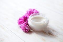 Terapia facciale crema cosmetica di trattamento medico dello skincare della pelle stanca, moisturi professionale della pulitrice  fotografia stock libera da diritti