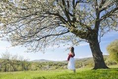 Terapia naturale dell'aroma immagine stock libera da diritti
