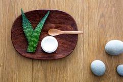 Terapia sana dello skincare del fronte basata su bellezza di verde di vera dell'aloe Fotografia Stock