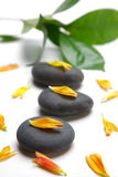 Terapii stones  Obraz Royalty Free