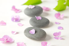 Terapii stones  Obrazy Royalty Free