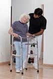 Terapista che aiuta il camminatore paziente di uso Fotografia Stock