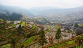 Terassenförmig angelegte Felder im Winter stockfoto