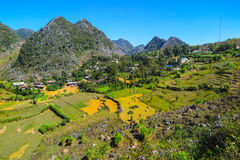 Terassenförmig angelegte Felder und die Landschaft der Hà Giang Provinz, Nord-Vietnam lizenzfreie stockbilder