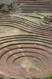 Terassenförmig angelegte Felder von Moray Lizenzfreie Stockfotografie