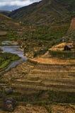 Terassenförmig angelegte Hügel in Madagaskar Stockbild
