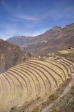 Terassenförmig angelegte Inkafelder und Ruinen des Dorfs Stockbild