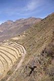 Terassenförmig angelegte Inkafelder und Ruinen des Dorfs Stockbilder