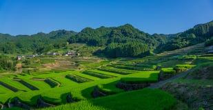 Terassenförmig angelegte Reisfelder in Hasami, Japan Lizenzfreies Stockbild