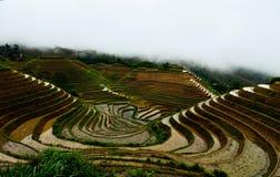 Terassenförmig angelegte Reisfelder Jinkeng in Longshan, Guilin lizenzfreies stockfoto