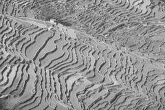 Terassenförmig angelegte Reisfelder Yuanyang stockbilder