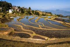 Terassenförmig angelegter Adlerschnabel Yuanyang Lizenzfreies Stockbild