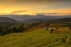 Terassenförmig angelegter Reis Mae Chaem, Chiang Mai, Thailand Stockfotos