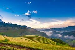 Terassenförmig angelegter Reis-Paddy Lizenzfreie Stockfotos