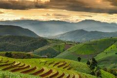 Terassenförmig angelegter Reis und Landschaft Chiang Mai Lizenzfreie Stockfotos