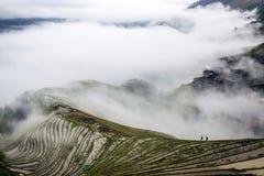 Terassenförmig angelegtes Feld in der Wolke stockbilder