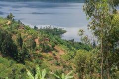 Terassenförmig angelegtes Feld durch See Ruhondo, Ruanda Lizenzfreie Stockfotografie