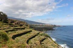 Terassenförmig angelegtes Land nahe bei dem Ozean Lizenzfreies Stockfoto