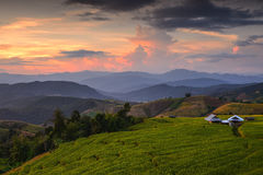Terassenförmig angelegtes Reis-Feld, Mae Chaem, Chiang Mai, Thailand Lizenzfreie Stockbilder