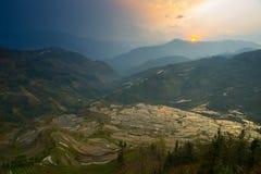 Terassenförmig angelegtes Reisfeld Stockfotografie