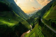 Terassenförmig angelegtes Reisfeld in MU Cang Chai, Vietnam stockfotos