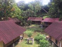 Terata Malaya, Janda Baik, Bentong, Malaysia Arkivbilder