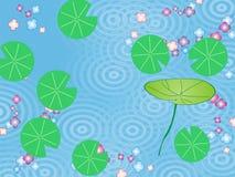 Teratai Dan bunga di air Στοκ Φωτογραφίες
