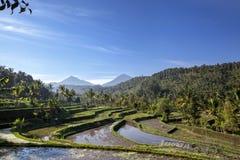 Tercet góry Bali Mt Batur, Mt Abang, Mt Agung w Mor zdjęcia stock
