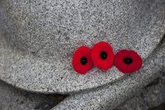 Tercet maczki przy Wojennym pomnikiem Obrazy Royalty Free