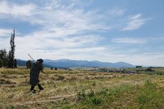 Terchova, Slowakije, vierde Juli, 2018: Oude vrouw die hooi harken stock fotografie