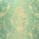 Terciopelo verde Foto de archivo libre de regalías